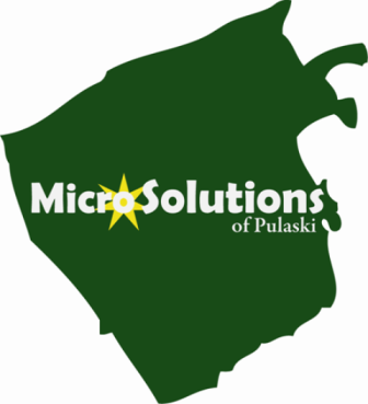 Micro Solutions of Pulaski